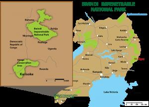 Bwindi-impenatrable-national-Park