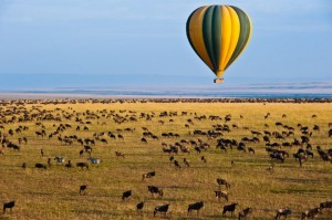 hot-air-ballon-safaris